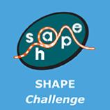 Shape Chellenge 2411151