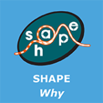 Shape Why 241115