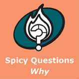 Spicy Why 241115